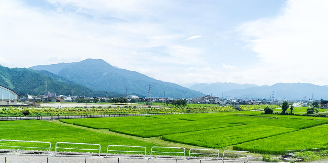 田舎体験 新潟県南魚沼市の景色